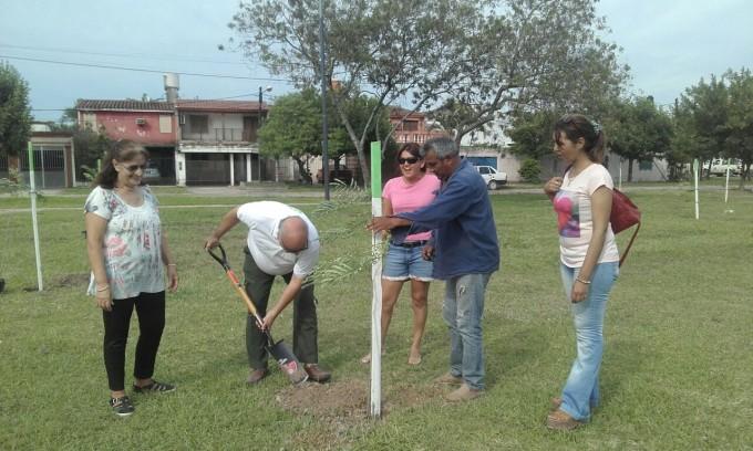 Arbolado urbano: Municipio y vecinos plantaron chivatos en la plaza 1 de Octubre