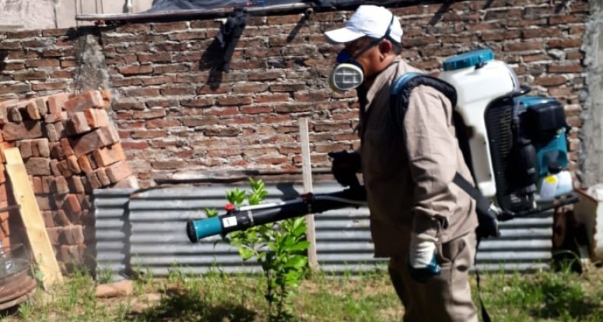 Salud refuerza los operativos para prevenir el avance del dengue