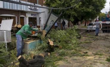 Emergencia hídrica: Las distintas áreas del municipio realizan tres turnos de trabajo y mantienen la guardia permanente