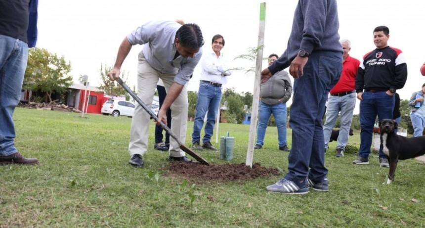Forestación urbana: El intendente supervisó la implantación de arboles en la zona de Los Troncos y Los Teros