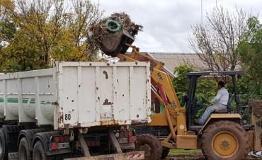 El Municipio avanza con operativos de limpieza en el cementerio