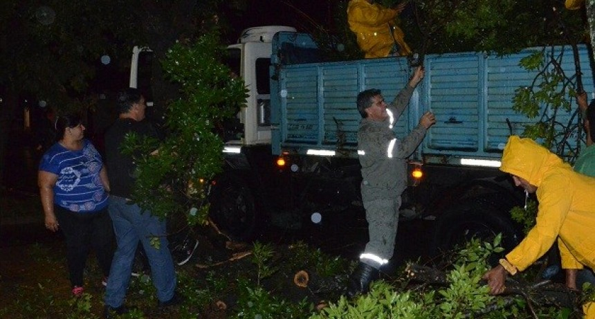 Otros 32 milímetros en Resistencia: recolección  de residuos y transporte público con normalidad