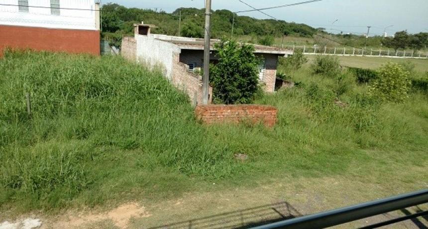 El municipio continúa con verificación e intimación a propietarios por la limpieza de terrenos baldíos