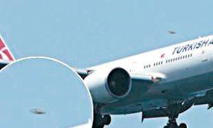 Video asombroso: piloto de avión de línea filmó un OVNI