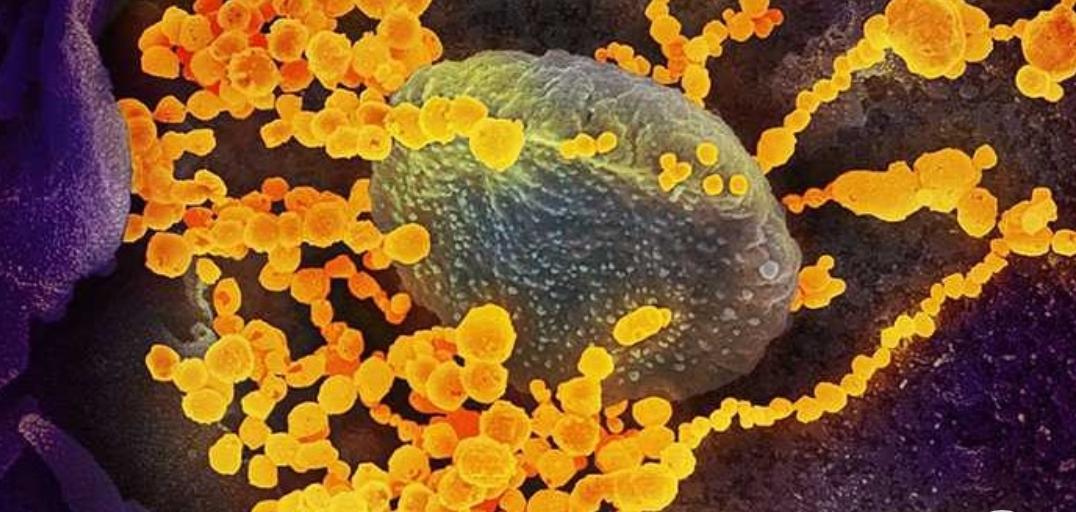 Una mujer de 60 años, nueva víctima fatal con coronavirus