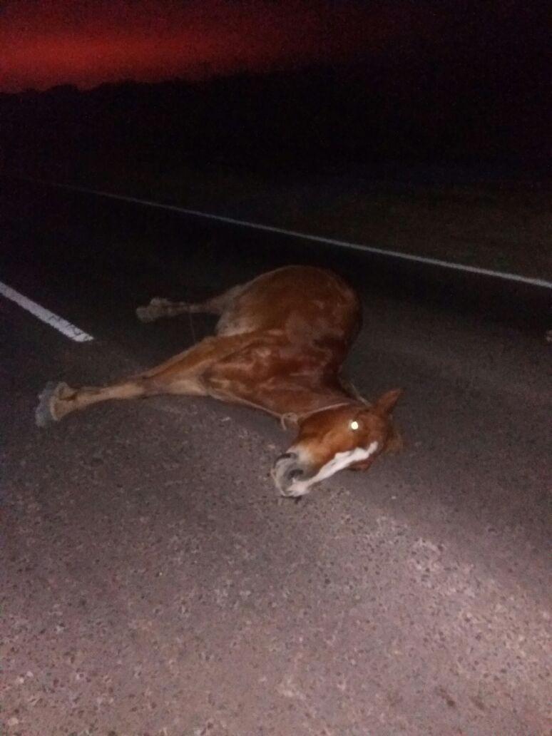 Primicia de Alerta Urbana: accidente de tránsito en Quitilipi