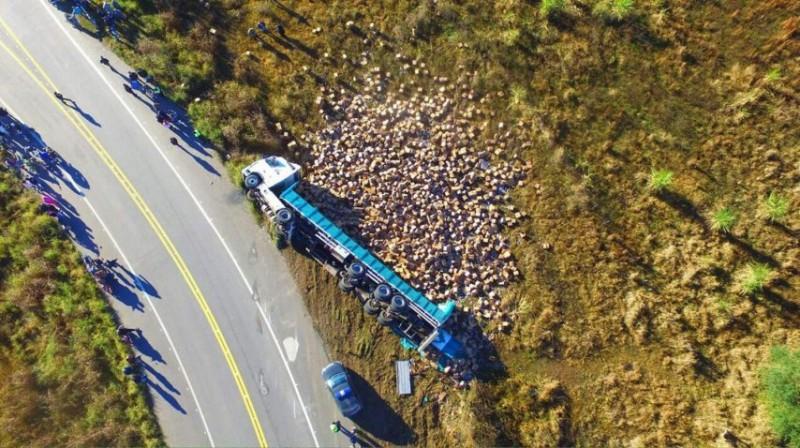 Volcó un camión con botellas de aceite y decenas de personas fueron a saquearlo