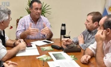 El gobierno informó que financiará los costos de las fumigaciones debido a la presencia de mangas de langostas en la zona sudoeste