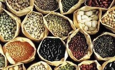 Producción destinará semillas a 2.500 pequeños productores horticolas asentados en distintos puntos de la Provincia