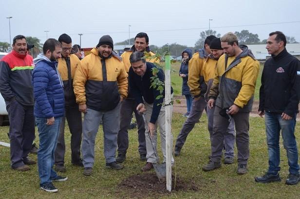 El municipio avanza hacia la meta de los 40.000 árboles implantados