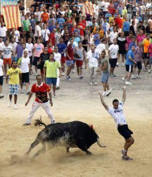 En pleno festival, toro atacó a un hombre y lo mató