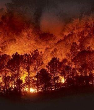Alarmante: El Amazonas se quema en tiempo récord