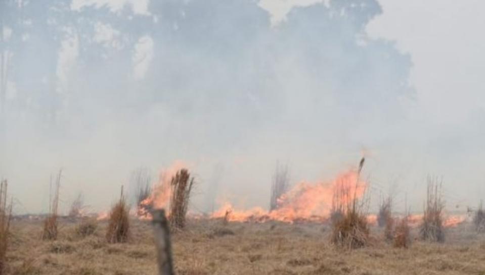 Resistencia: El fuego arrasa los campos del terraplén: peligran las familias de la zona