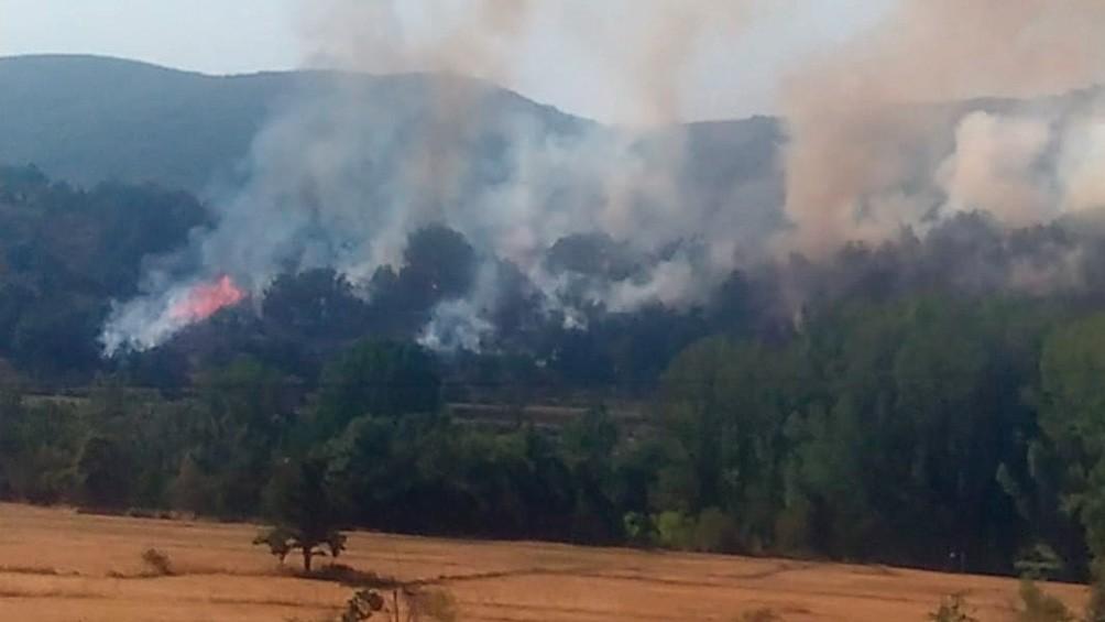 España: se registró una temperatura récord de 47,4 grados y hay alerta por los incendios