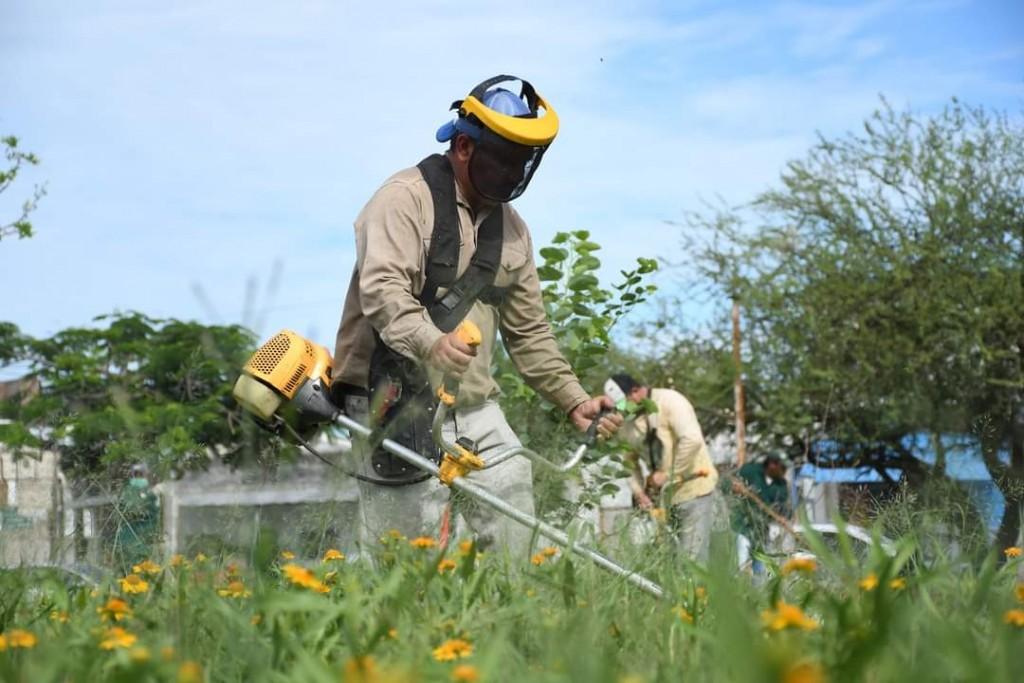 Saneamiento ambiental: el equipo hábitat intensifica los trabajos en distintos puntos del gran Resistencia