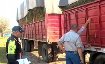 Caminera interviene dos cargamentos ilegales en operativos de control