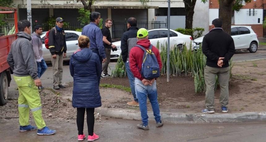Capitanich supervisó trabajos de embellecimiento de los canteros centrales de la avenida Paraguay