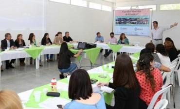 Capitanich participó de una nueva reunión del Consejo Consultivo de Género