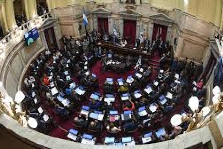 Senadores de Cambiemos propusieron suspender por 180 días los aumentos de las dietas